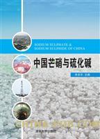 中国芒硝与硫化碱(精装)