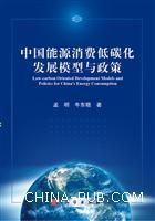 中国能源消费低碳化发展模型与政策[按需印刷]