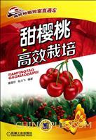 甜樱桃高效栽培-高效种植致富直通车-05