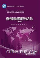 商务智能原理与方法(第2版)