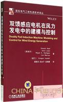 双馈感应电机在风力发电中的建模与控制