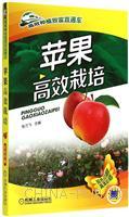 苹果高效栽培