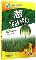 葱高效栽培-双色印刷高清彩插
