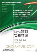 (特价书)Java项目实战精编