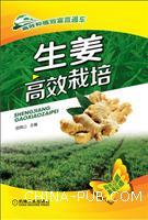 生姜高效栽培-双色印刷高清彩插