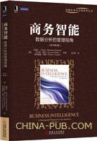 (特价书)商务智能:数据分析的管理视角(原书第3版)