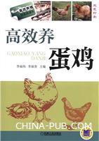 高效养蛋鸡-双色印刷