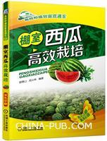棚室西瓜高效栽培