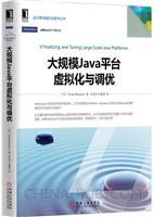 (特价书)大规模Java平台虚拟化与调优