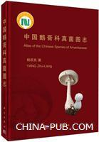 中国鹅膏科真菌图志