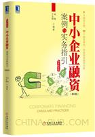 中小企业融资案例与实务指引 (第2版)