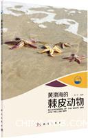 黄渤海的棘皮动物