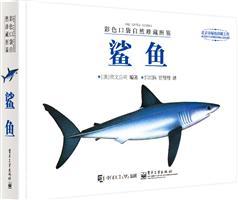 彩色口袋自然珍藏图鉴――鲨鱼(全彩)