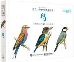 彩色口袋自然珍藏图鉴――鸟(全彩)