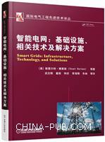 智能电网:基础设施、相关技术及解决方案