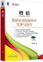 增值:集团公司内部审计实务与技巧(china-pub首发)