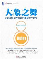 大象之舞:大企业如何在创新方面完胜小企业(china-pub首发)