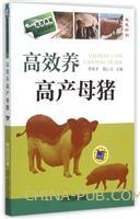 高效养高产母猪(双色印刷)