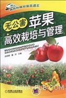 无公害苹果高效栽培与管理