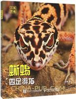四足游龙:蜥蜴