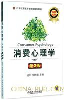 消费心理学 第2版