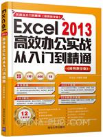 Excel 2013高效办公实战从入门到精通  视频教学版  配光盘  实战从入门到精通 视频教学版
