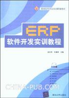 ERP软件开发实训教程