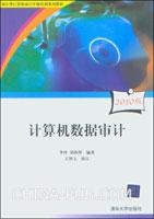 计算机数据审计(2010版)