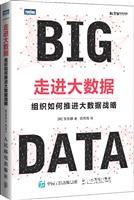 走进大数据 组织如何推进大数据战略