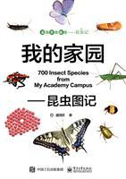 我的家园――昆虫图记