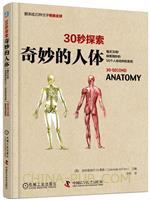 30秒探索:奇妙的人体