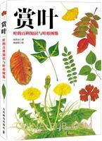 赏叶 叶的百科知识与叶形图鉴