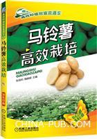 马铃薯高效栽培