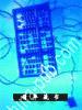 纵横当代科学前沿 美国华裔科学家科普文集.第一卷,生命科学专辑