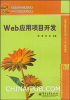 Web应用项目开发