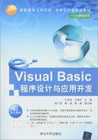 Visual Basic程序设计与应用开发