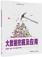 大数据挖掘及应用(大数据系列丛书)
