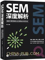 SEM深度解析 搜索引擎营销及主流网站分析实战