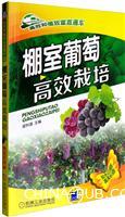 棚室葡萄高效栽培
