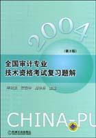 2004年全国审计专业技术资格考试复习题解