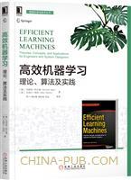 高效机器学习:理论、算法及实践