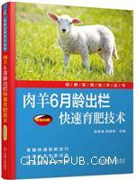 肉羊6月龄出栏快速育肥技术