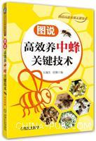 图说高效养中蜂关键技术