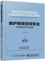 维护网络空间安全――中国网络安全法解读