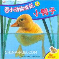 看小动物成长3--小鸭子