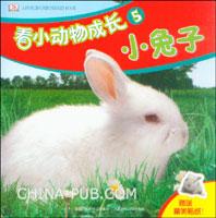 看小动物成长5--小兔子