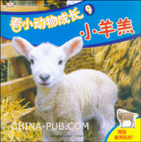 看小动物成长9--小羊羔