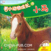 看小动物成长10--小马