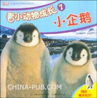 看小动物成长7--小企鹅