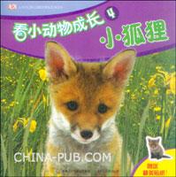 看小动物成长4--小狐狸
